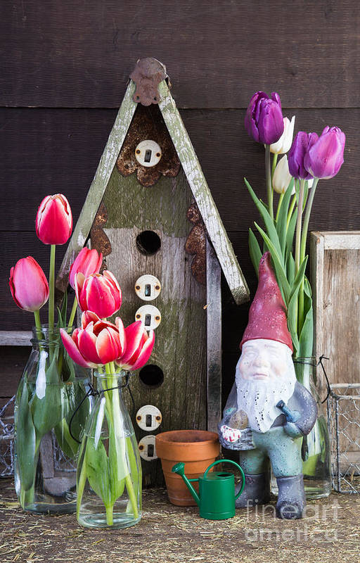 Barn Art Print featuring the photograph Inside The Garden Shed by Edward Fielding
