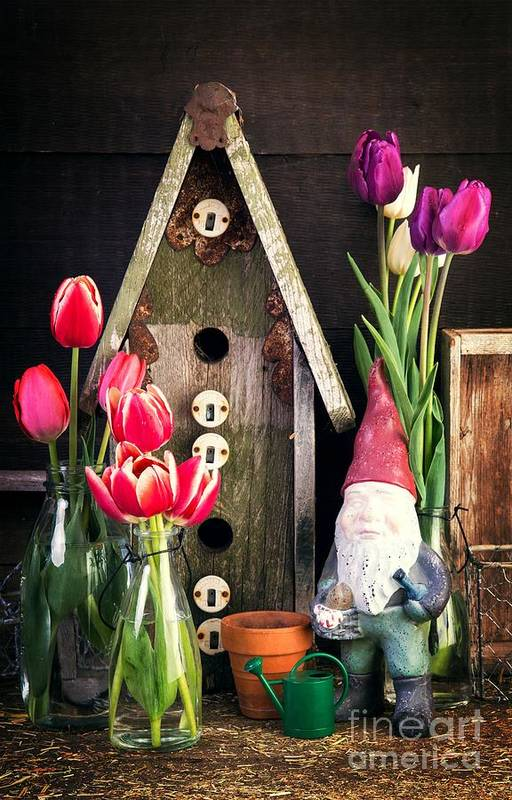Barn Art Print featuring the photograph Inside The Potting Shed by Edward Fielding