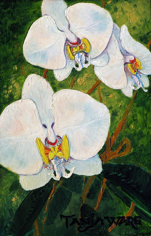 Orchids Art Print featuring the painting Snowy Ladies by Tanja Ware