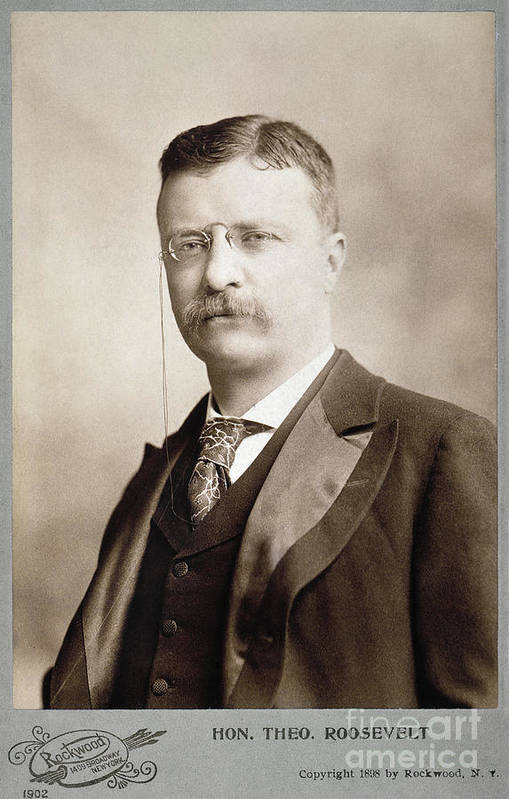 1898 Art Print featuring the photograph Thedore Roosevelt by Granger