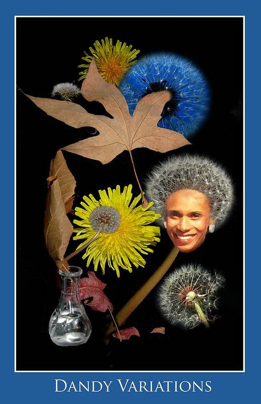 Flowers Art Print featuring the photograph Dandy Variations by Richard Gordon