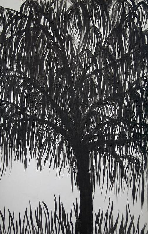 Willow Tree Landscape Black White Art Print featuring the painting Black Willow by Sally Van Driest