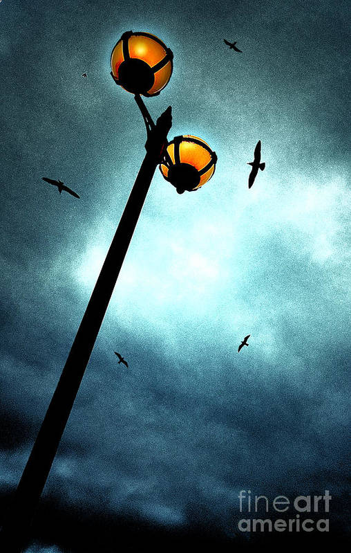 Lamp Art Print featuring the photograph Lamps With Birds by Meirion Matthias