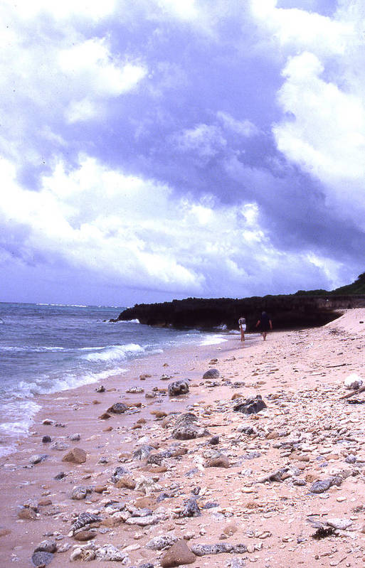 Okinawa Art Print featuring the photograph Okinawa Beach 15 by Curtis J Neeley Jr