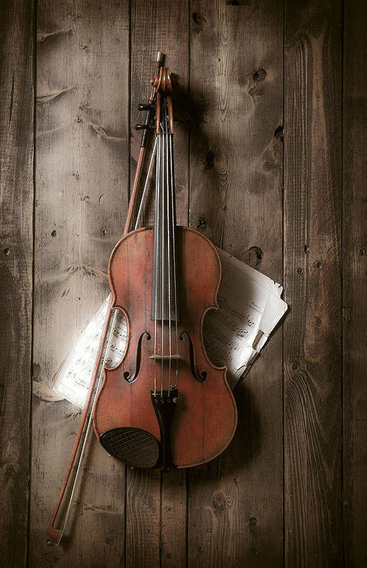 Bow Art Print featuring the photograph Violin by Garry Gay