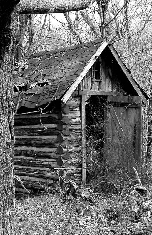 Ansel Adams Art Print featuring the photograph Winslowlogouthouse-11x17 by Curtis J Neeley Jr