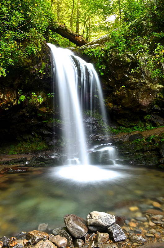 Grotto Art Print featuring the photograph Grotto Falls by Frozen in Time Fine Art Photography