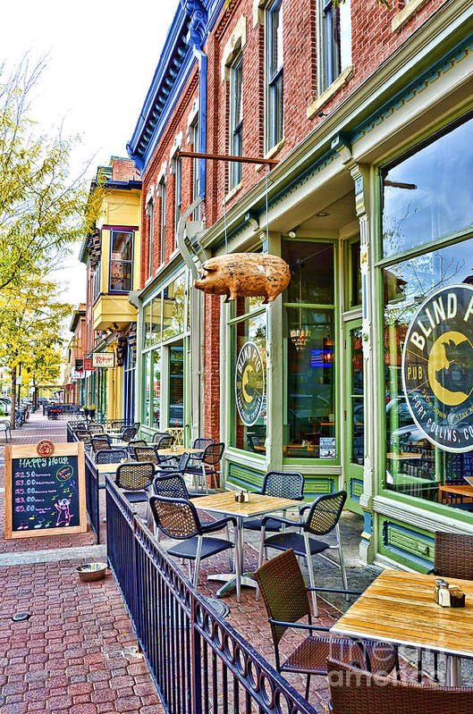 Fort Collins Art Print featuring the photograph Blind Pig by Keith Ducker