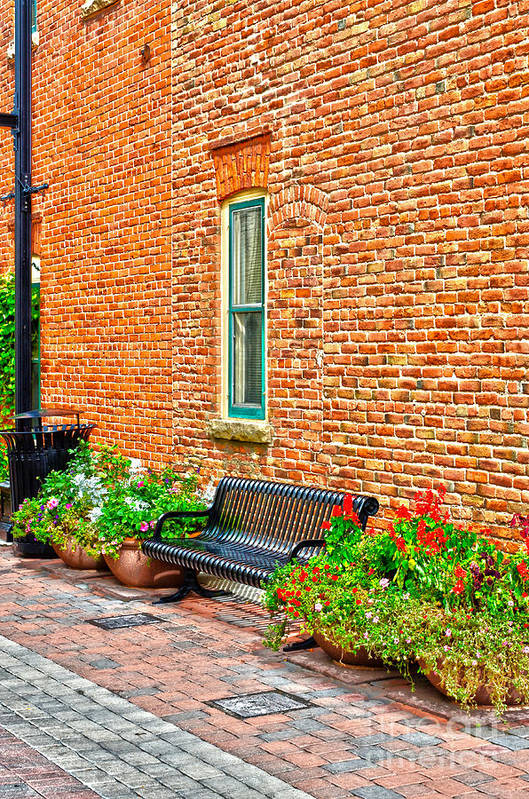 Fall Color Art Print featuring the photograph Brick Alley 3 by Baywest Imaging