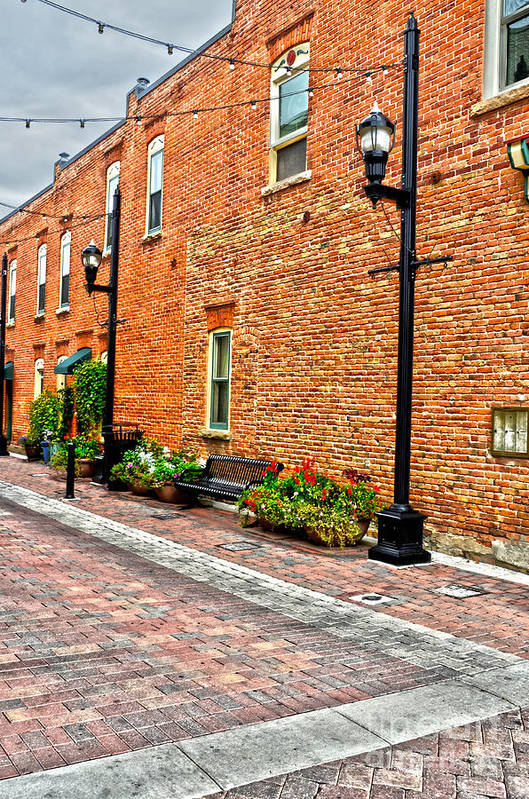 Door Print featuring the photograph Brick Alley by Baywest Imaging