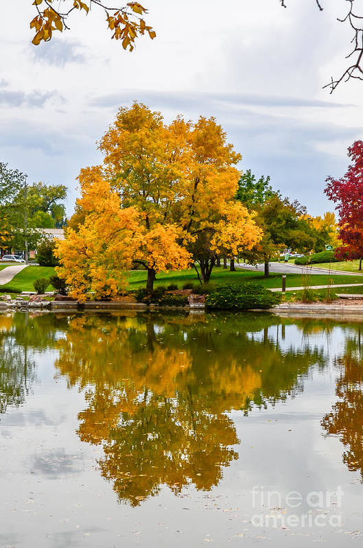 Fall Print featuring the photograph Fall Fort Collins-2 by Baywest Imaging