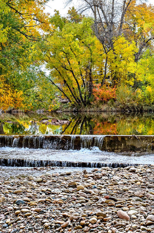 Fall Art Print featuring the photograph Fall On The Poudre by Baywest Imaging