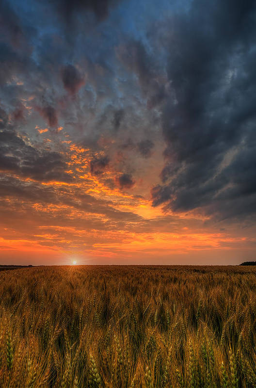 Fire In The Sky Art Print featuring the photograph Fire In The Sky by Nebojsa Novakovic