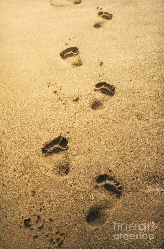 Sand Art Print featuring the pyrography Footprints In The Sand by Jelena Jovanovic