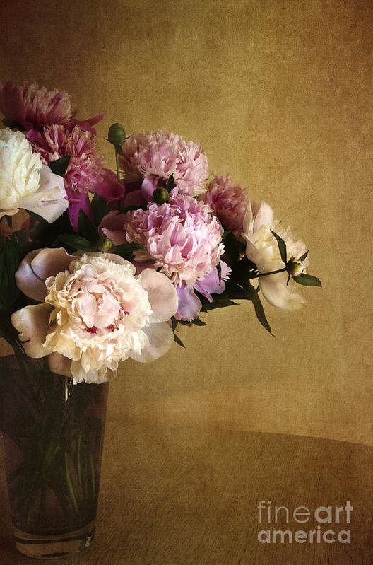 Peonies Art Print featuring the photograph Peonies by Elena Nosyreva