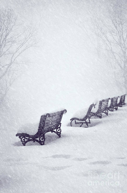 Snow Art Print featuring the pyrography Snow In The Park by Jelena Jovanovic