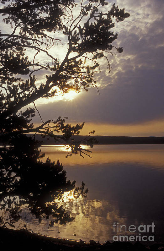 Yellowstone Art Print featuring the photograph Sunrise At Yellowstone Lake by Sandra Bronstein