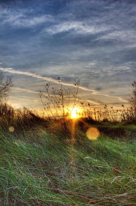 Sunrise Art Print featuring the photograph Sunrise Through Grass by Tim Buisman