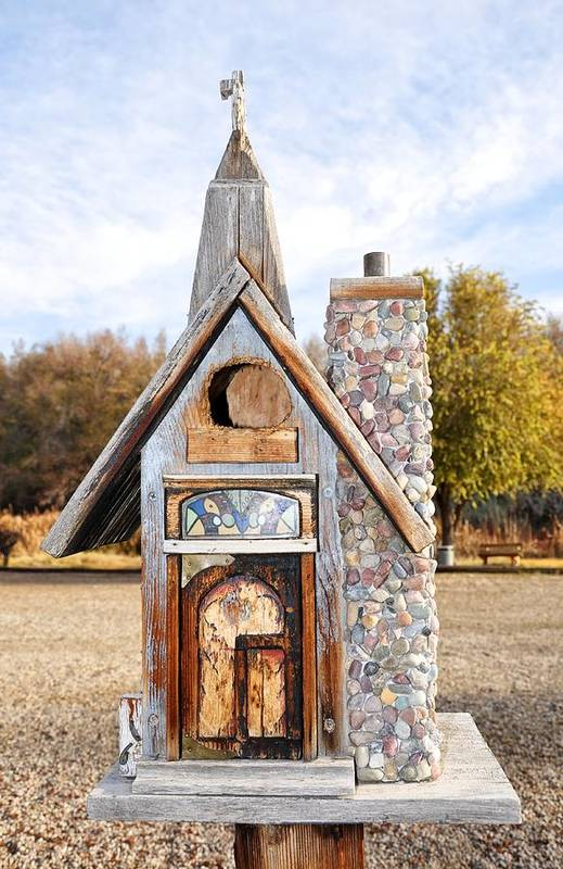 Melba; Idaho; Birdhouse; Shelter; Outdoor; Fall; Autumn; Leaves; Plant; Vegetation; Land; Landscape; Tree; Branch; House; Cross; Art Print featuring the photograph The Birdhouse Kingdom - The American Coot by Image Takers Photography LLC - Carol Haddon