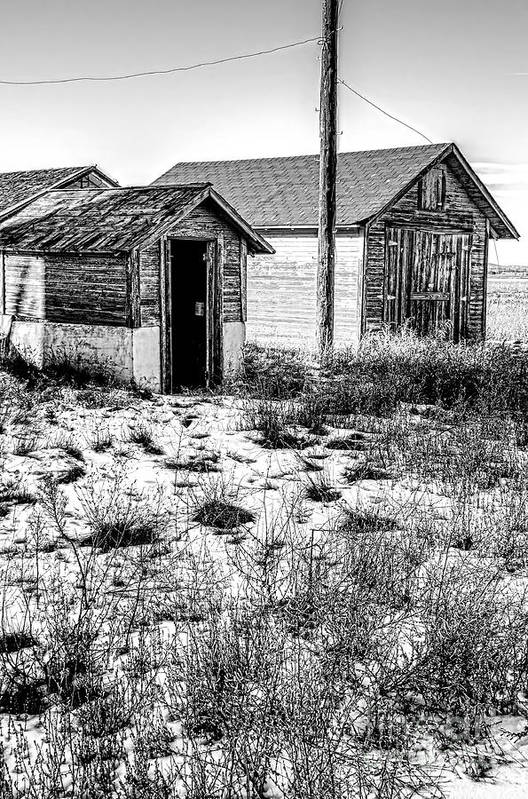 Old Farm House Art Print featuring the photograph The Tool Shed by Baywest Imaging
