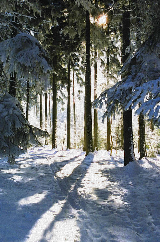 Sunny Art Print featuring the photograph Winter Landscape by Aged Pixel
