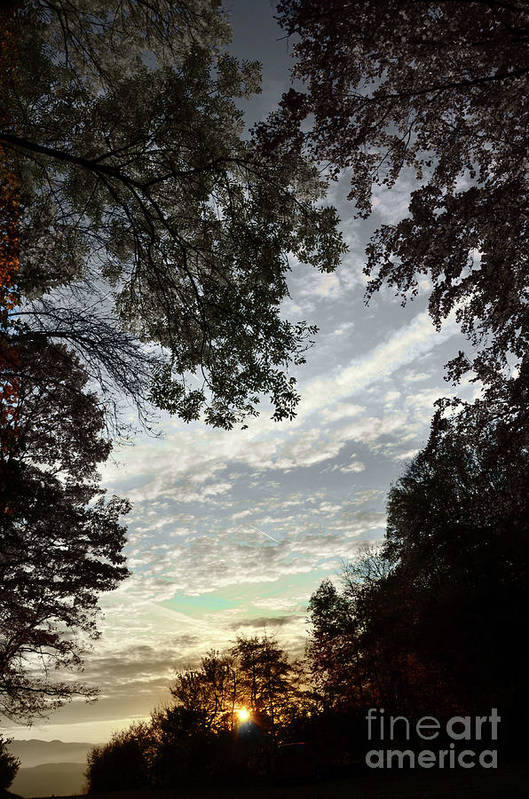 Photograph Art Print featuring the photograph Autumn Beauty 2 by Bruno Santoro