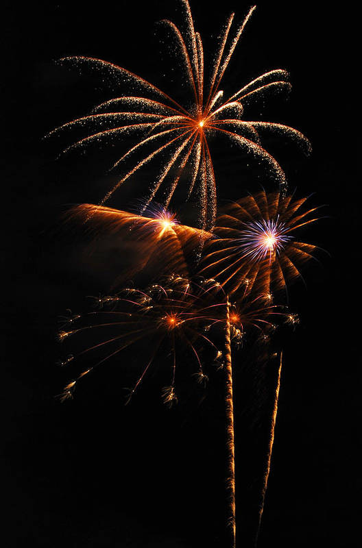 Fireworks Art Print featuring the photograph Fireworks 1580 by Michael Peychich