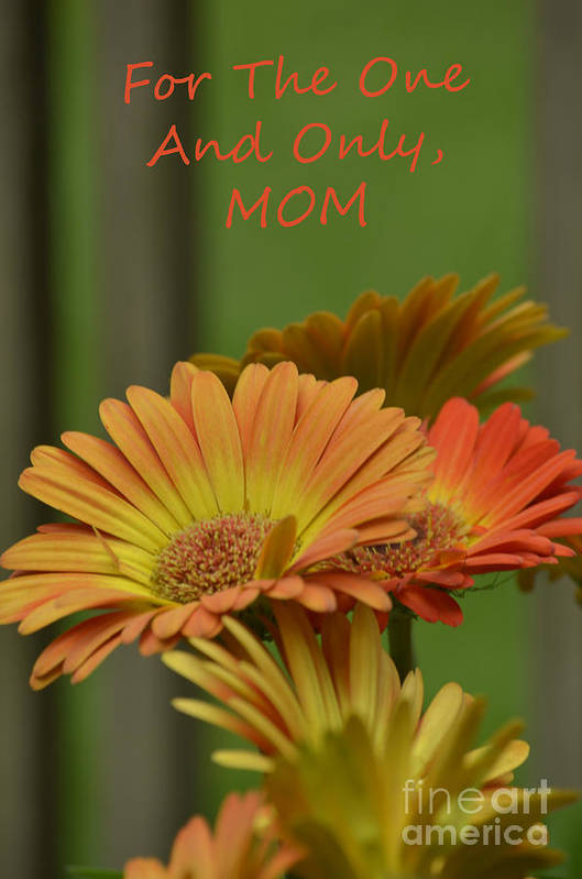 Flowers Art Print featuring the photograph For The One And Only Mom by Donna Brown