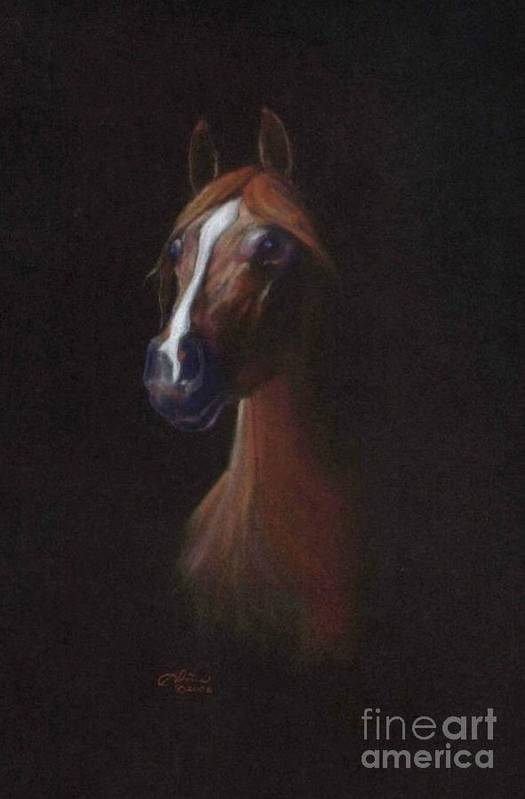 Equestrian Art Print featuring the pastel Keturous by Tonia Antilla