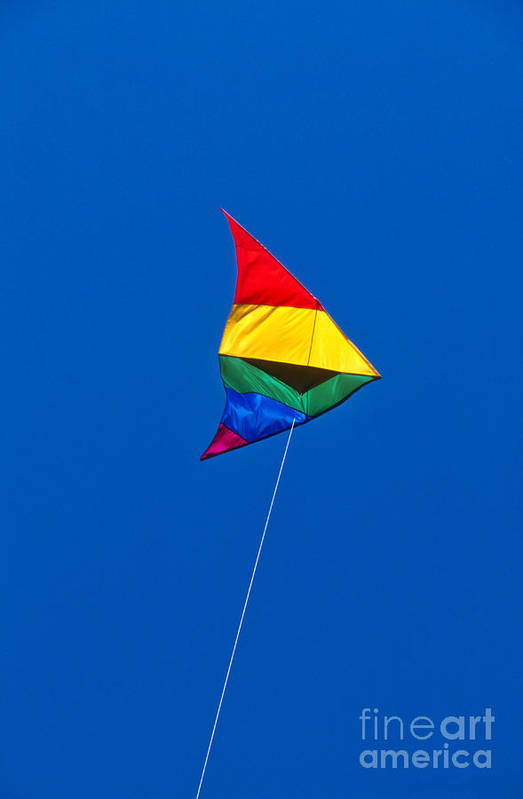 Kite Art Print featuring the photograph Kite by John Greim