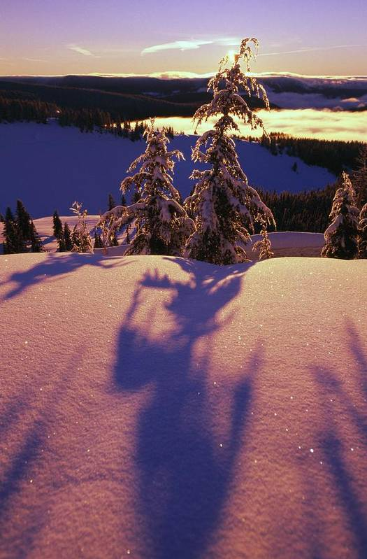 Frosty Art Print featuring the photograph Pink And Purple Sunrise Shadows Of Snow by Natural Selection Craig Tuttle