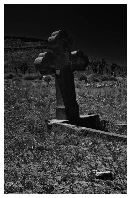Art Photography Art Print featuring the photograph Still Here by Franklin Jeffers