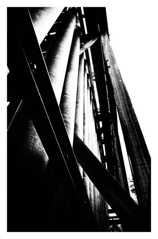 Art Photography Art Print featuring the photograph Still Standing by Franklin Jeffers