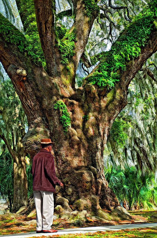 New Orleans Art Print featuring the photograph Strolling With Giants Painted by Steve Harrington