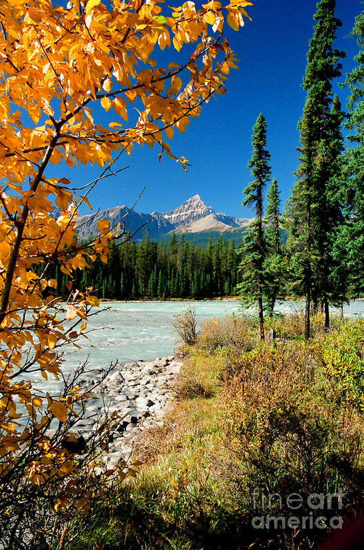 River Art Print featuring the photograph Sunwapta River by Frank Townsley
