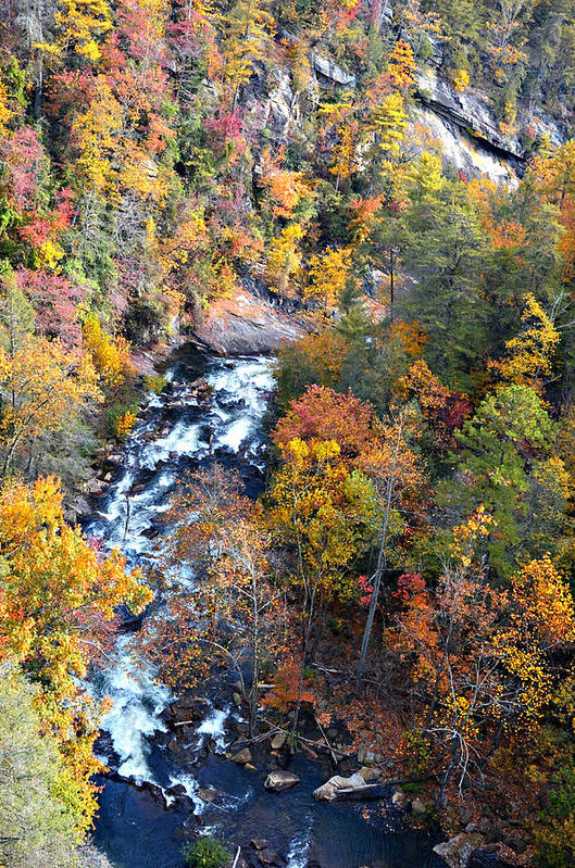 River Art Print featuring the photograph Tallulah River Gorge by Susan Leggett