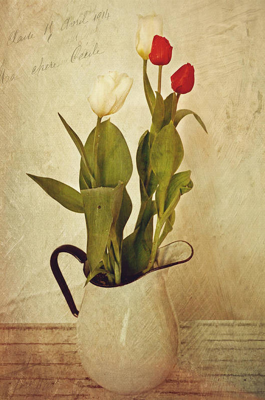 Tulips Art Print featuring the photograph Tulips by Kathy Jennings