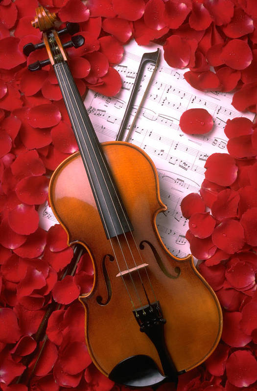 Violin Art Print featuring the photograph Violin On Sheet Music With Rose Petals by Garry Gay