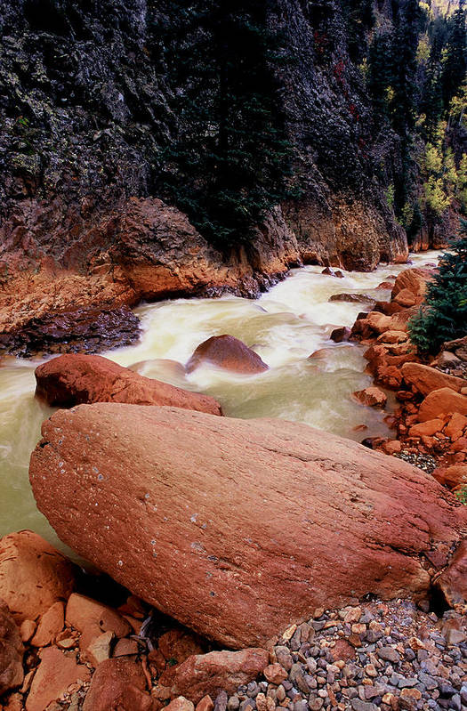 Landscapes Art Print featuring the photograph Canyon Creek Ouray Colorado by Tom Fant