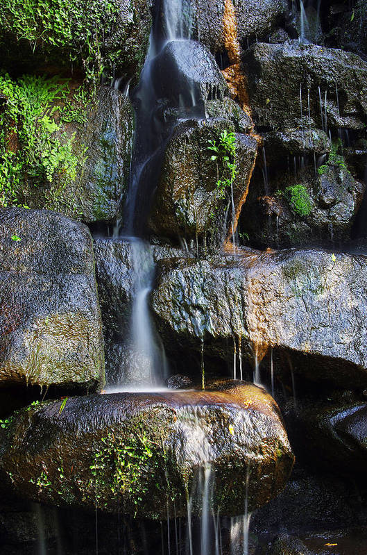 Asian Print featuring the photograph Waterfall by Carlos Caetano