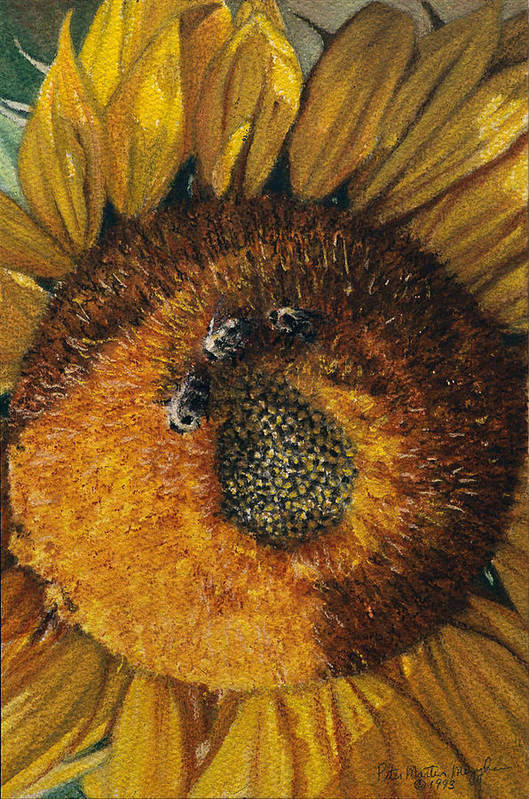 Floral Art Print featuring the painting 3 Bees by Peter Muzyka