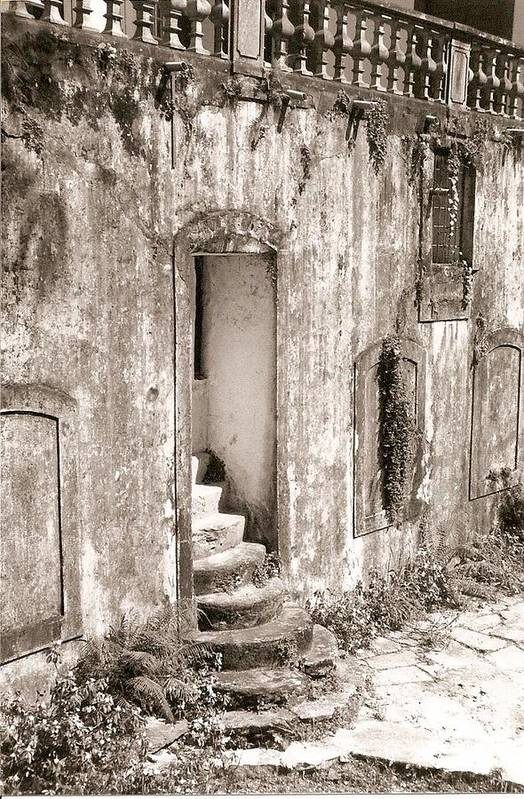 Photograph Art Print featuring the photograph Ancient Door Way by Patricia Bigelow