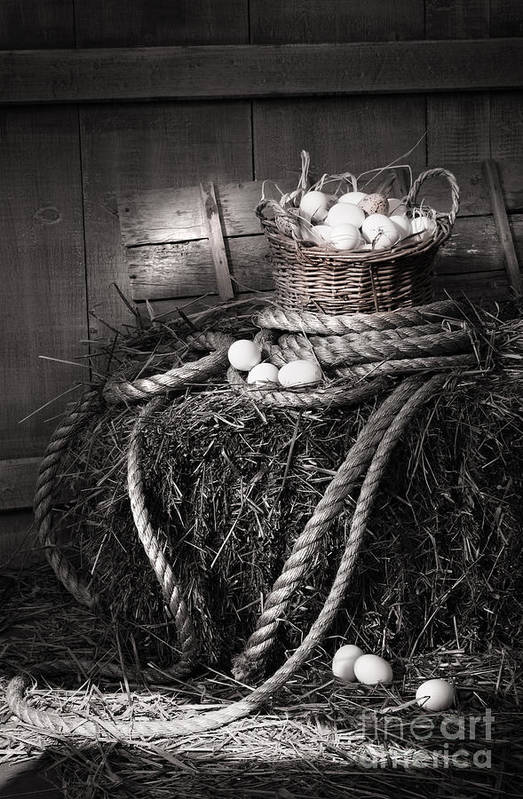 Background Print featuring the photograph Basket Of Eggs On A Bale Of Hay by Sandra Cunningham