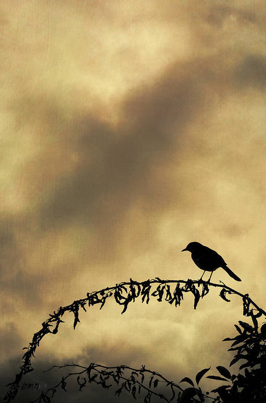 Bird Art Print featuring the photograph Bird On Branch Montage by Dave Gordon