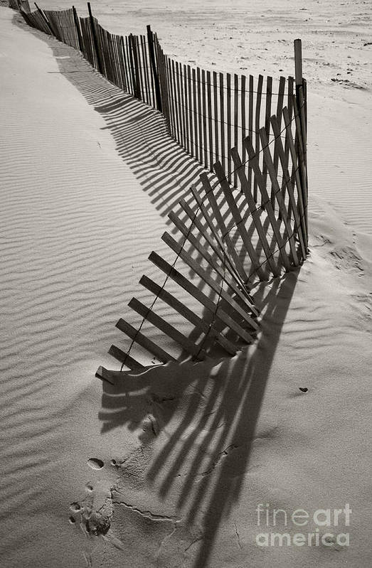 Snow Fencing Art Print featuring the photograph Buried by Timothy Johnson