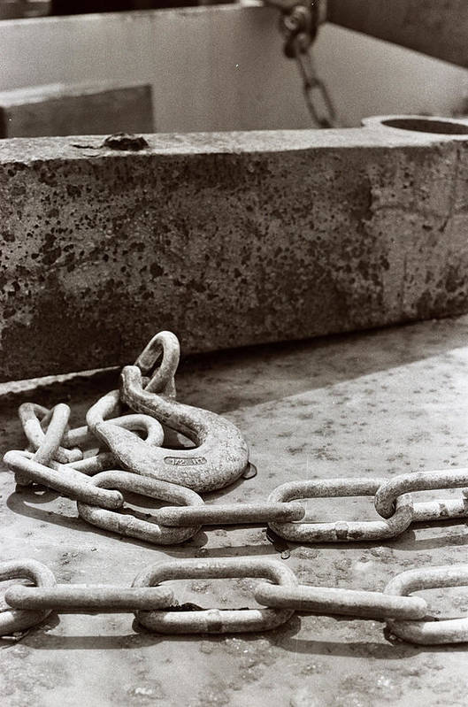 Chain Art Print featuring the photograph Chain 2 by Linnea Tober