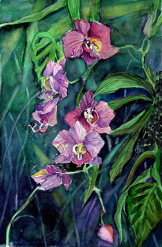 Orchid Art Print featuring the painting Dark Orchid by Mindy Newman