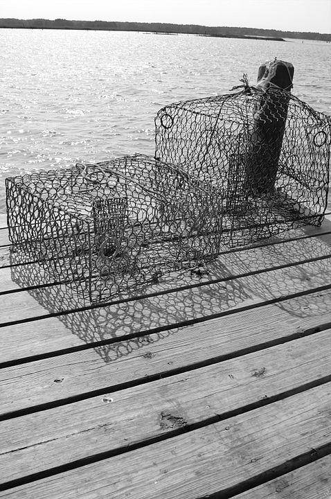 Crab Art Print featuring the photograph Empty Crab Traps by Gregory Smith