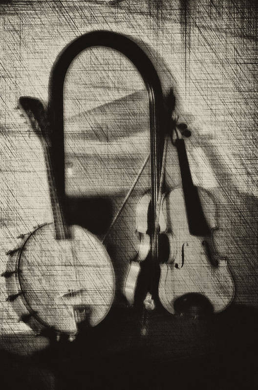 Fiddle Art Print featuring the photograph Fiddle And Mandolin Banjo by Bill Cannon