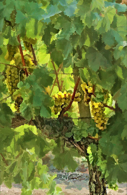 Grapes Art Print featuring the digital art I Heard It On The Grapevine by Patricia Stalter